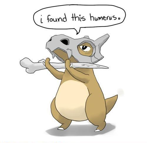 Funny Picture - I found this humerus