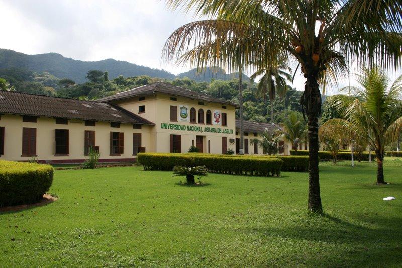 Universidad Nacional Agraria de la Selva - UNAS