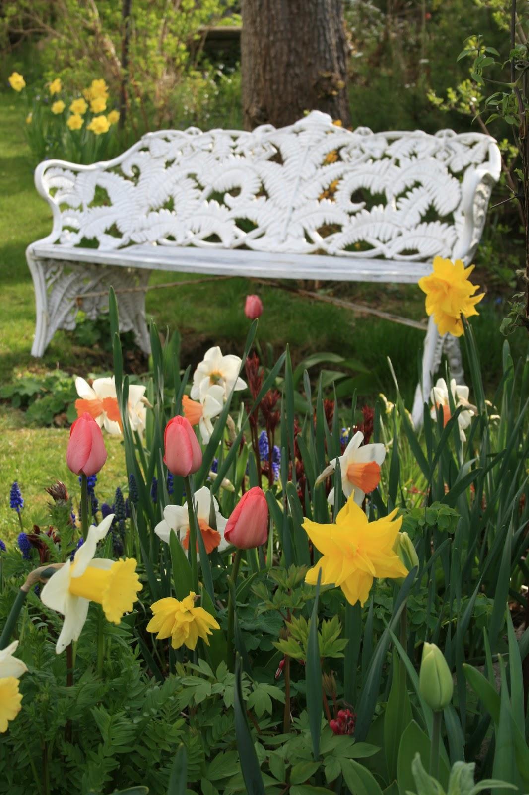 vårträdgård