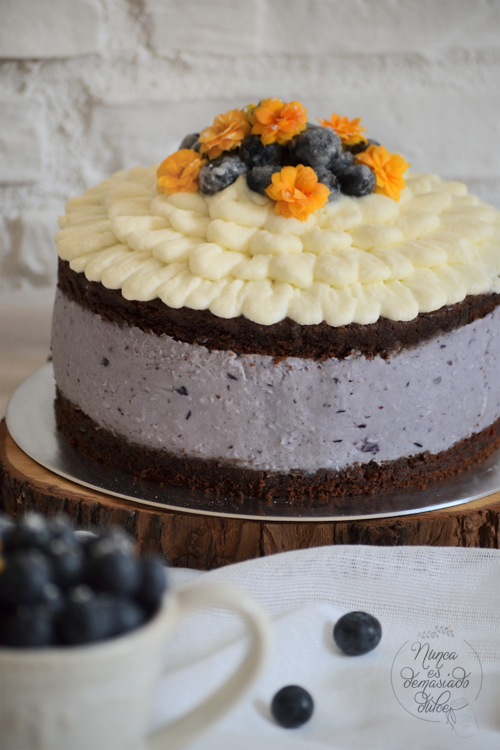 tarta-cake-arandanos-blueberry-blueberries-cheesecake-queso-chocolate-bizcocho
