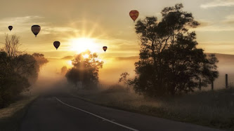Hot Air Balloons in Landscape