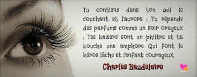 Phrase d'amour dans une citation de Charles Baudelaire