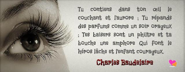 Phrase d'amour de Charles Baudelaire