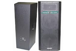 Rekomendasi Skema & Ukuran Box Speaker 15x2 Untuk Monitor Panggung