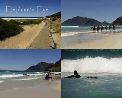 Walking, horse-riding swimming and surfing at Noordhoek
