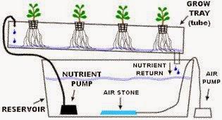 hidroponik-sistem-NFT