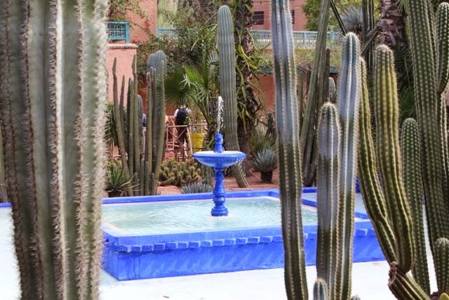 Majorelle garden, Marrakech