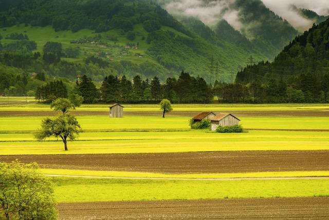 Padang rumput Swiss