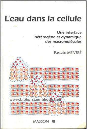 Livre : L'eau dans la cellule, Une interface hétérogène et dynamique des macromolécules - Pascale Mentré