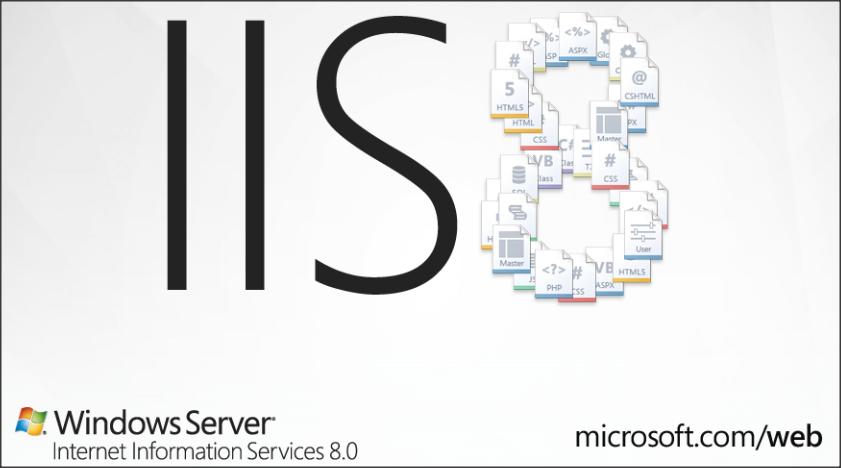 IIS 8 0 Dynamic IP Address & Domains Restrictions