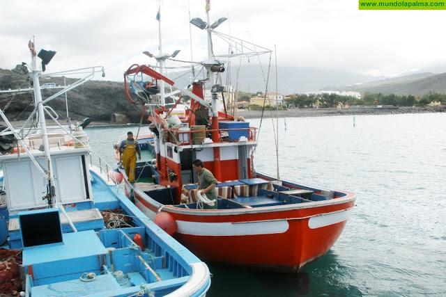 El Gobierno de Canarias valora positivamente las medidas impulsadas por Europa para ayudar al sector pesquero