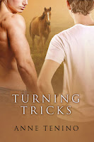 Review: Turning Tricks by Anne Tenino