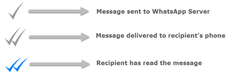 whatsapp-tick