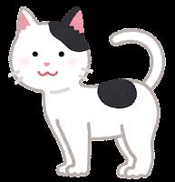 猫の模様のイラスト(黒白とび)
