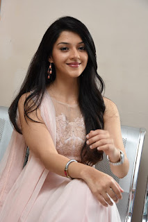 Actress Mehareen Latest Stills at Krishna Gaadi Veera Prema Gaadha Movie Thanks Meet  0035.jpg