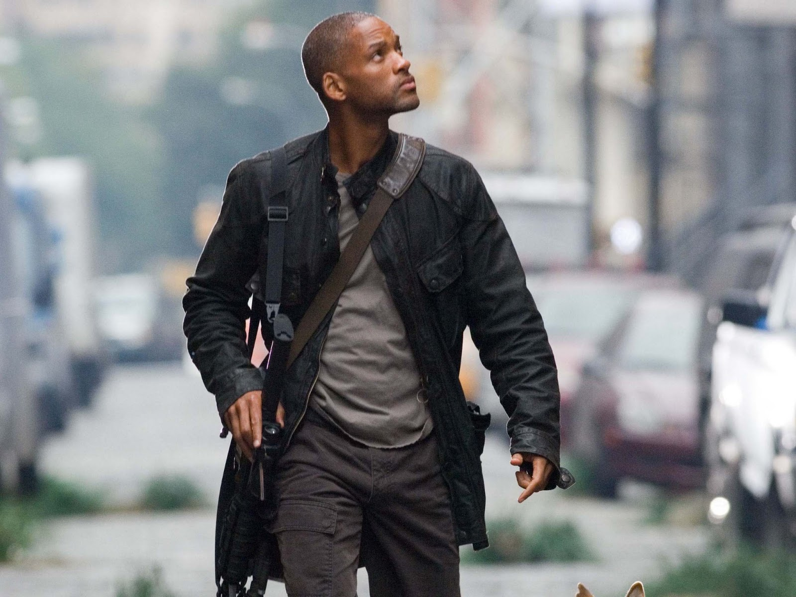 Like Every Body: Will Smith hd Wallpapers 2013
