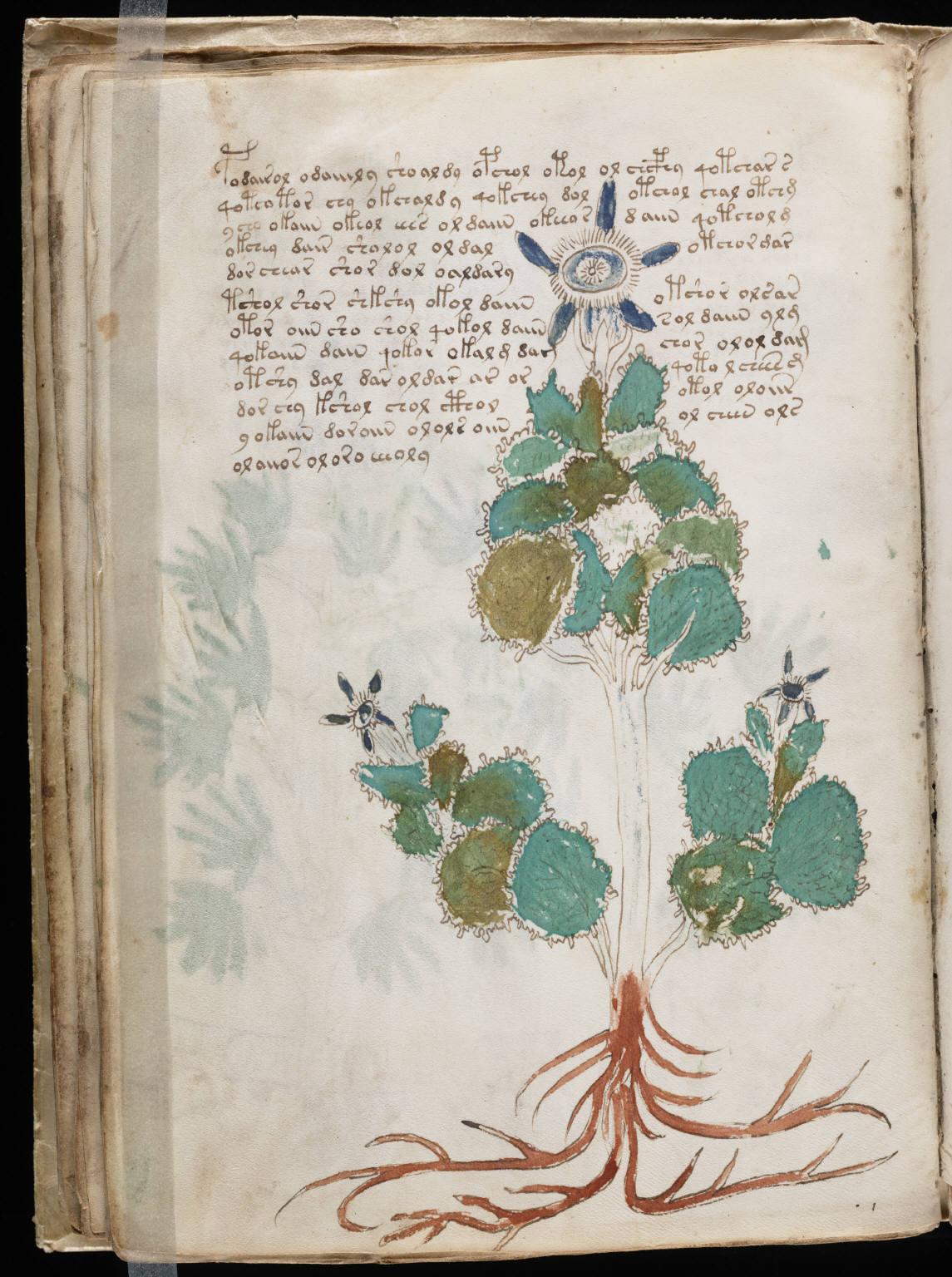 manuscrito046