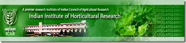 Indian Institute of Horticultural Research Recruitment 2016 Research Fellow, Enumerator, Skilled Asst, Worker, Helper – 39 Posts