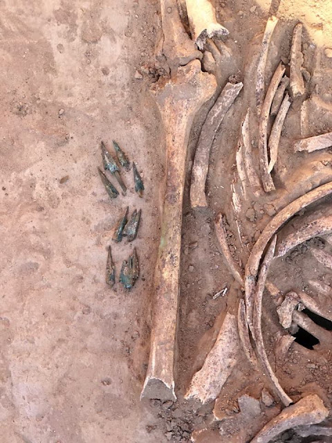 Grave of female Scythian warrior found in Ukraine
