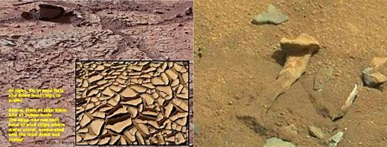 Fósseis de dinossauro Marte?