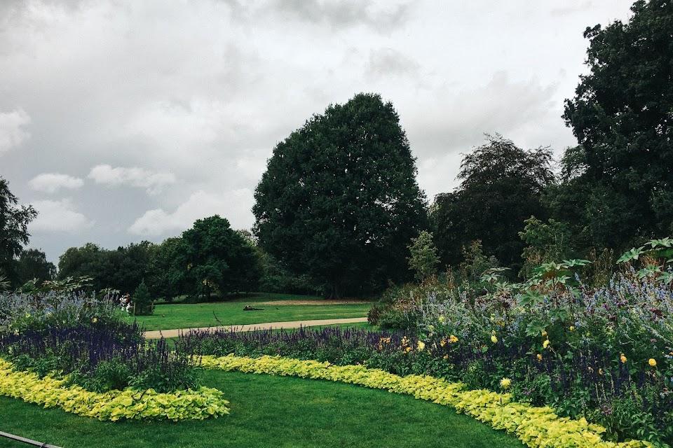 ハイド・パーク(Hyde Park) THE ROSE GARDEN