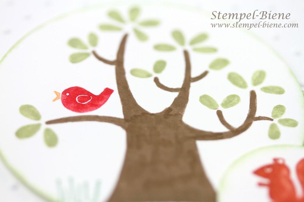 Stampin' Up Gastgeberinnenset Der Wald ruft, Stampin' Up Jahreskatalog 2014-2015, Stampin' Up Framelits Formen Kreis-Kollektion, Match the Sketch, Stampin' Up Sammelbestellung