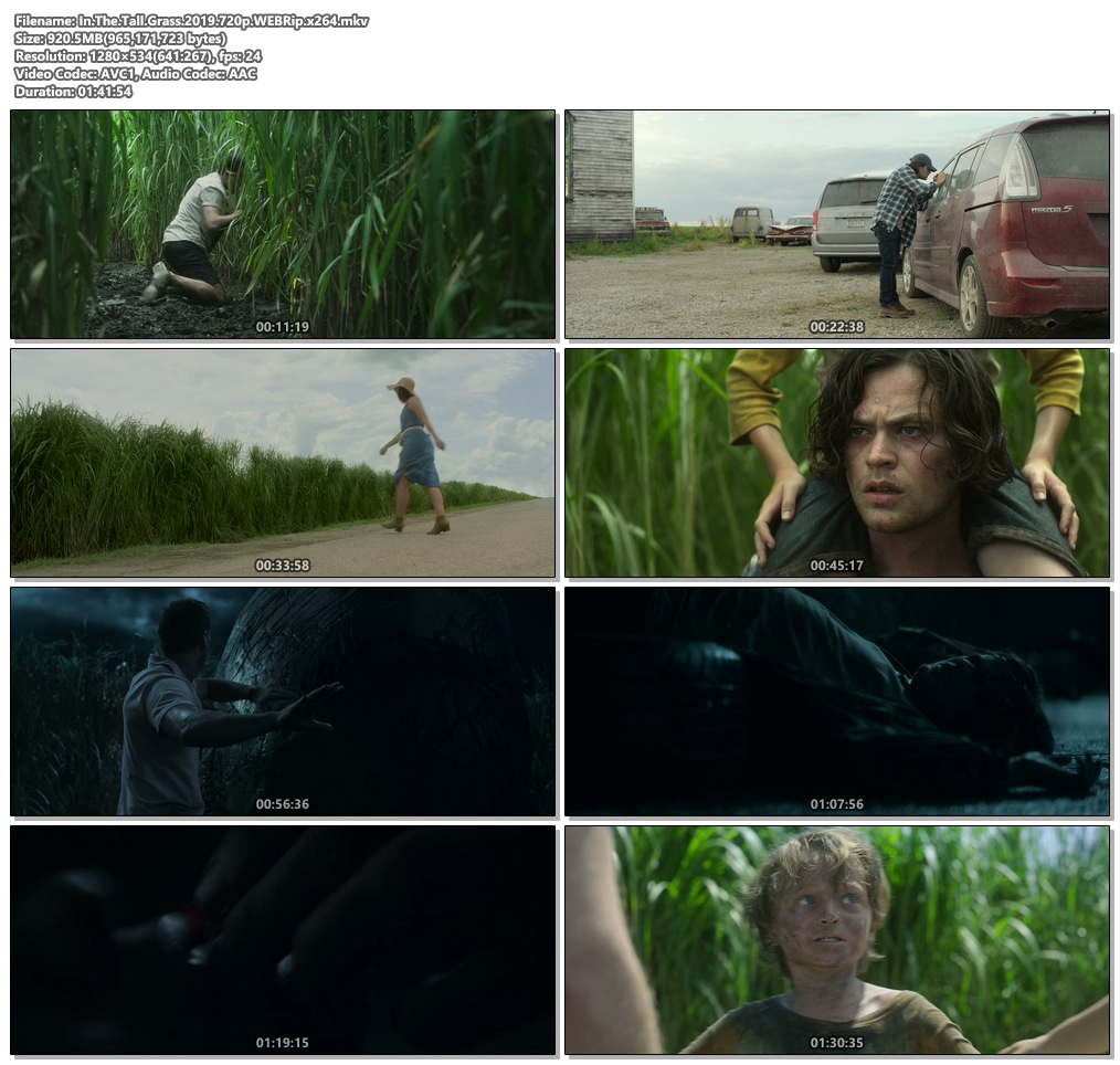 In The Tall Grass 2019 720p WEBRip x264 | 480p 300MB | 100MB HEVC Screenshot