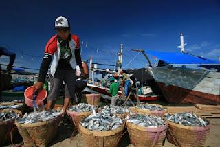 nelayan indramayu kesulitan ikan