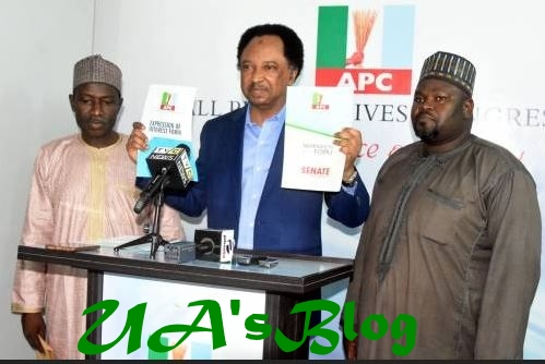 Shehu Sani Picks APC Senatorial Election Forms