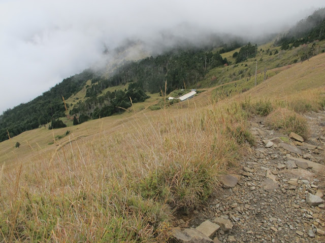 IMG 6026 - 台中登山│台灣第二高峰,雪山主峰、東峰兩天一夜攻頂!這兩天是我最難熬的一夜