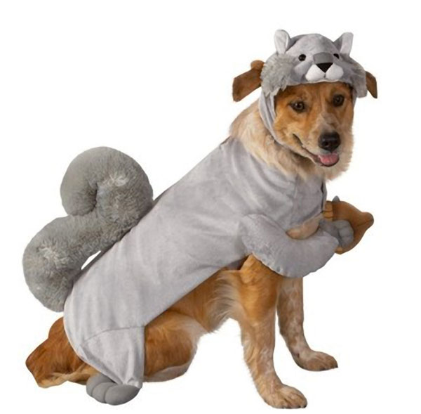 SQUIRREL DOG PET HALLOWEEN COSTUME SIZE X SMALL XSMALL | eBay