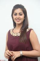 Nikki Galrani in a Brown Shining Sleeveless Gown at Nakshatram music launch ~  Exclusive 010.JPG