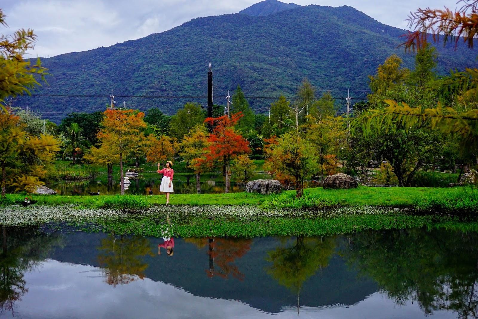 beautyanxiety.com-beautyanxiety.com-cultural-park-forest-DSC08885.jpg