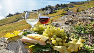vina_grecii