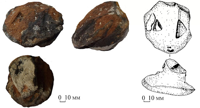 8,300-year-old ritual stone snake heads discovered in Ukraine