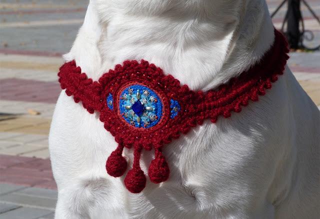 Собака – энергетический оберег. Как четвероногие друзья защищают наш дом и приносят удачу