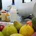 Pesquisadores discutem potencial da ressonância magnética na agricultura e na indústria