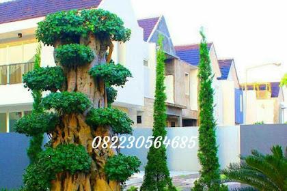 Tukang taman makassar, jasa taman makassar, vertikal garden makassar