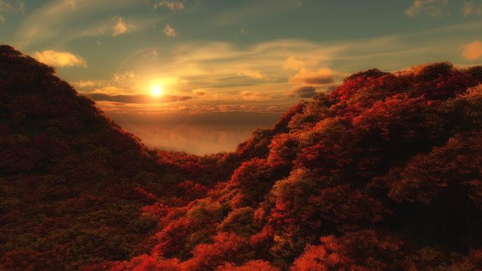 Wallpaper: HOT Morning Colors