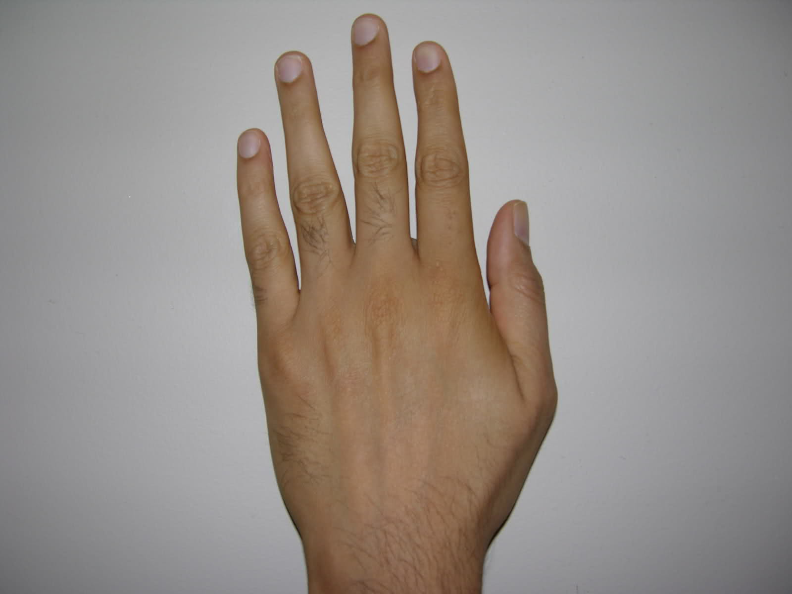 Meaning Of Hairs On The Backside Of Hand Palmistry