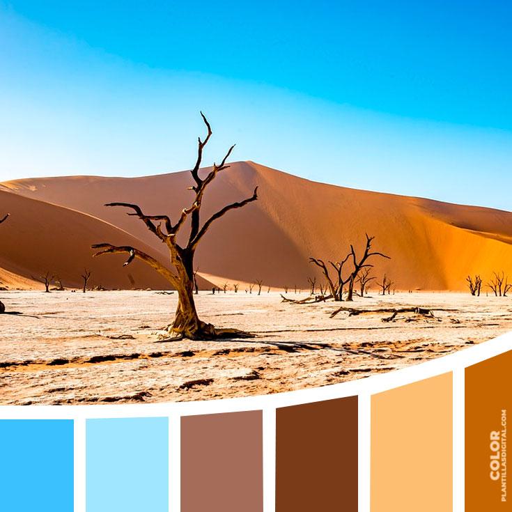 color_370