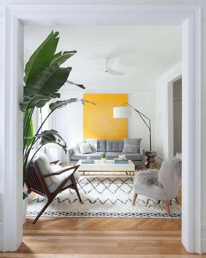 decoración salón pequeño con planta grande