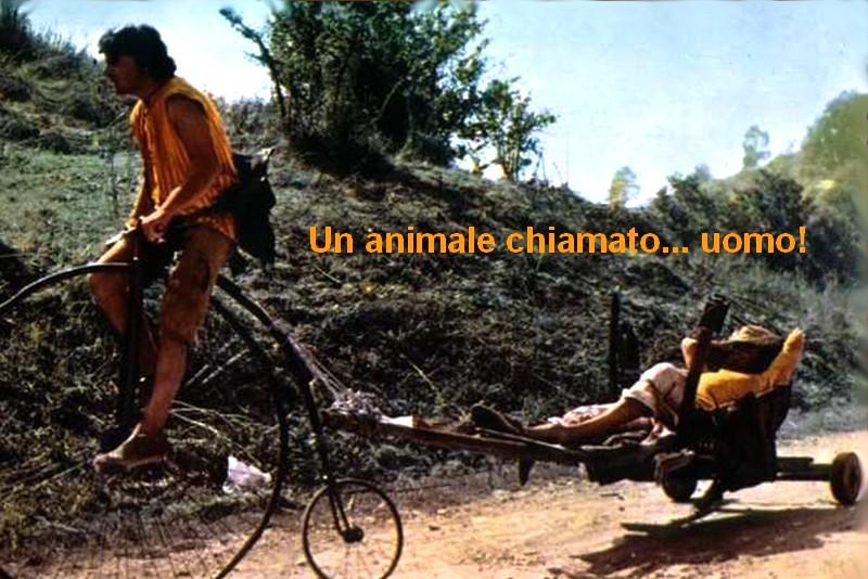 Un animale chiamato... uomo!