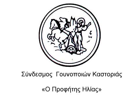 Σύνδεσμος Γουνοποιών Καστοριάς: Εορτασμός του προστάτη των γουνοποιών Προφήτη Ηλία