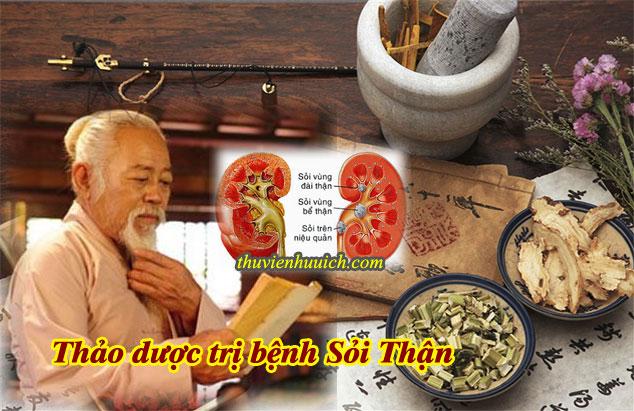 Các loại thảo dược có tác dụng trị sỏi thận
