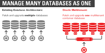 Oracle 12c – One Database and One Solution