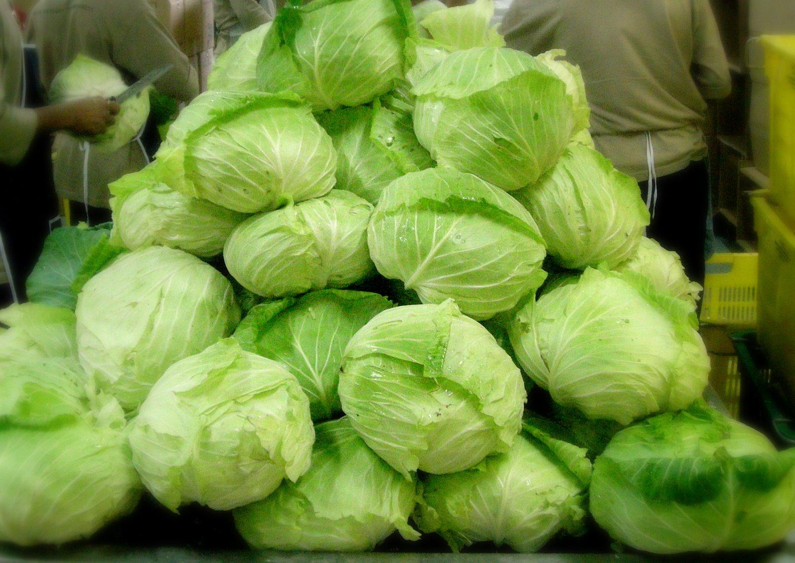 Buah-buahan dan Sayuran untuk Penderita Maag