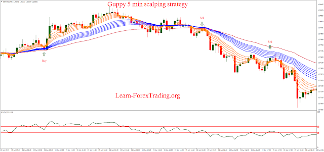 Guppy 5 min scalping strategy