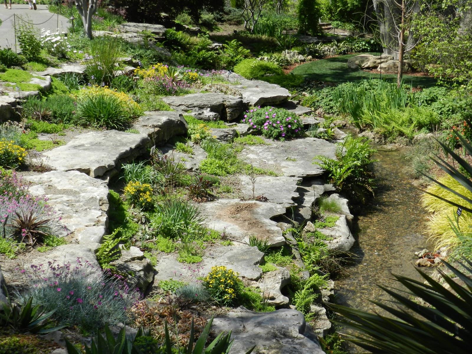 Prairie Rose's Garden: Tulipmania at the Dallas Arboretum on Rock Backyard  id=88025