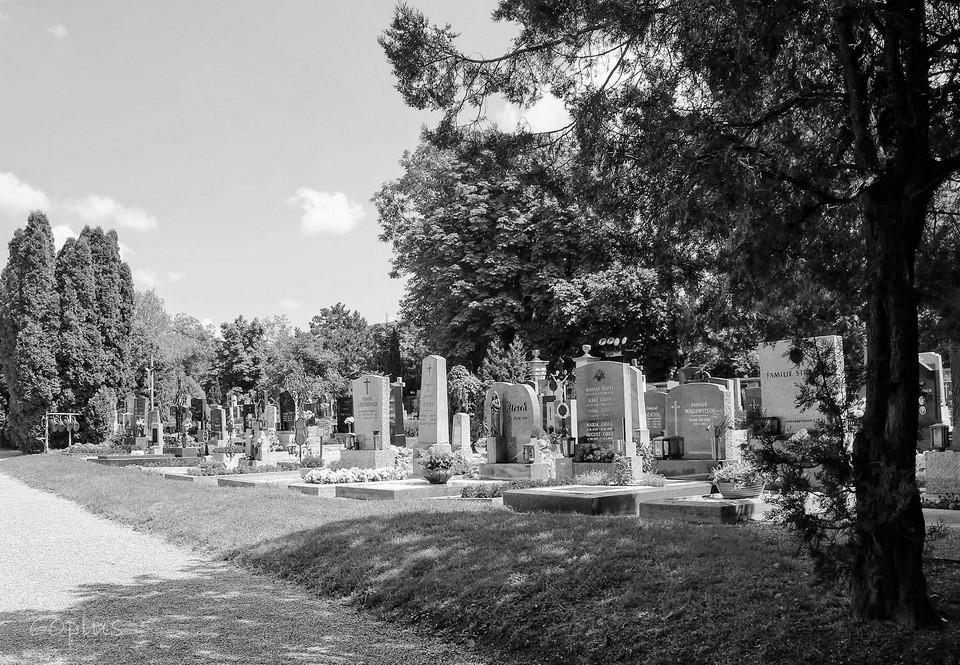 Láska z cintorína